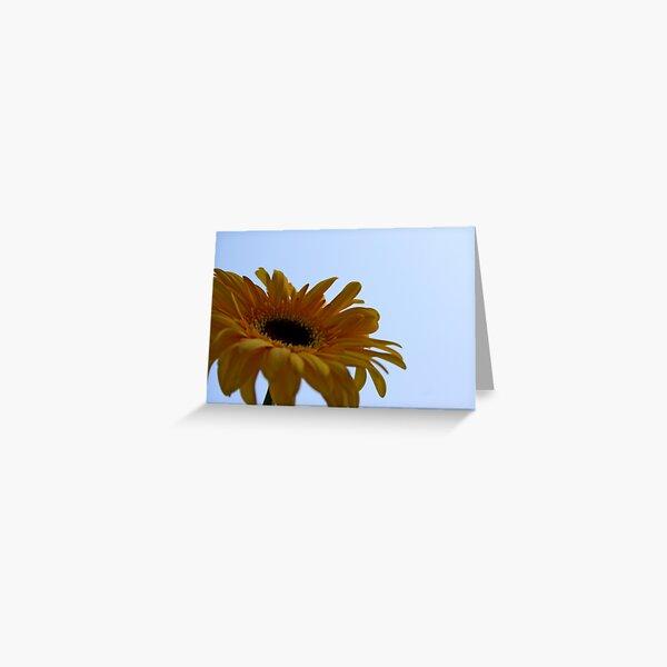 Daisy Skies Greeting Card