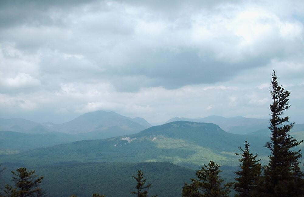 The beautiful White Mountain region by Elizabeth Thurston