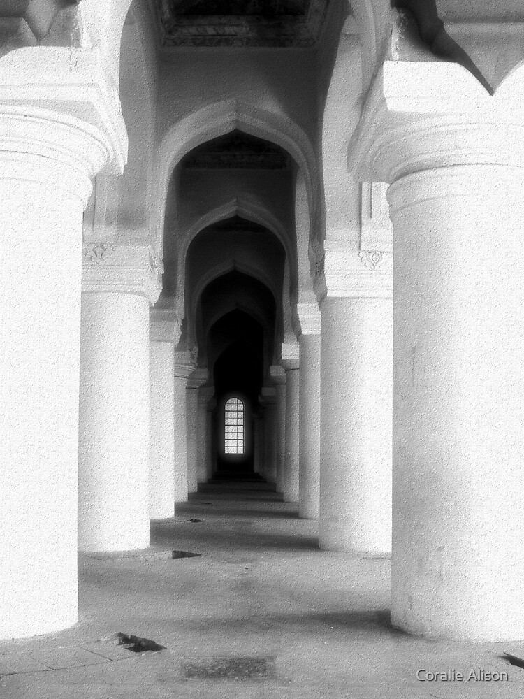Pillars by Coralie Alison
