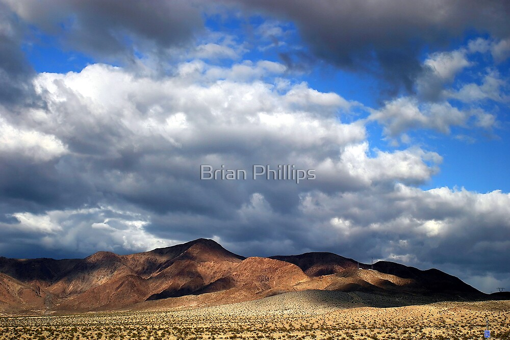 Mojave by Brian Phillips