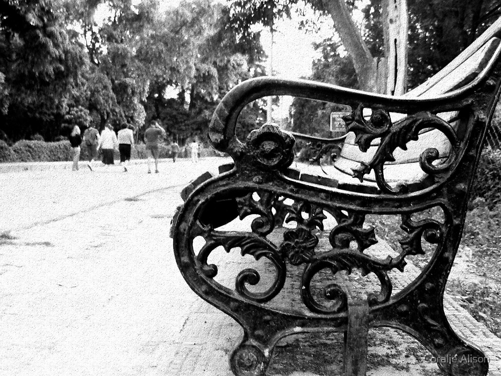 Park Bench by Coralie Alison
