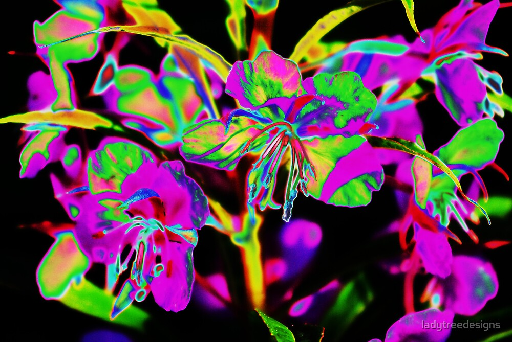 rosebay by ladytreedesigns