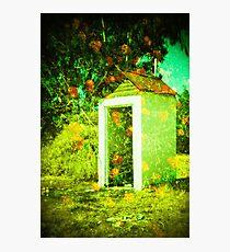 lantana dunny Photographic Print