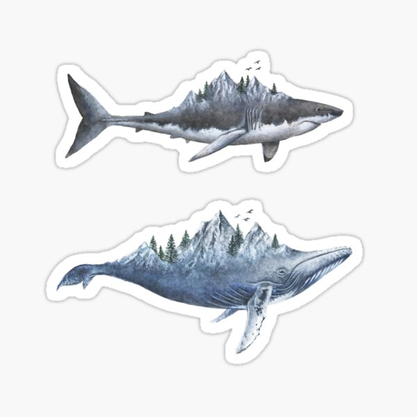 Shark and Whale  Sticker
