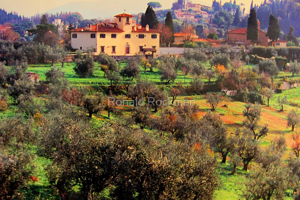 Bobili Gardens From The Pizzi Palace Florence Italy by Ronald Rockman