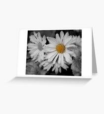 Daisy Wonderful Greeting Card