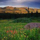 Shrine Ridge Part 2 by Paul Gana