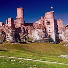 Castle Ogrodzieniec by Wizi-Top