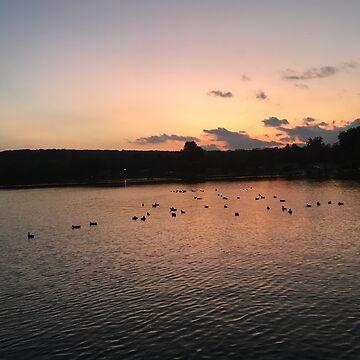 Ducks at Sunset by DavidGelhar