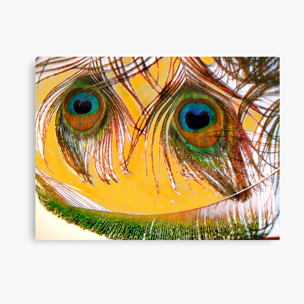 Here is Looking At You Canvas Print