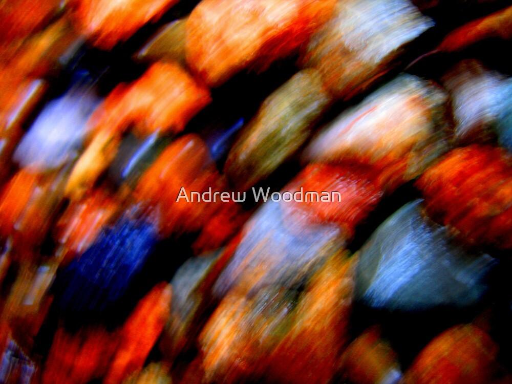 Falling by Andrew Woodman