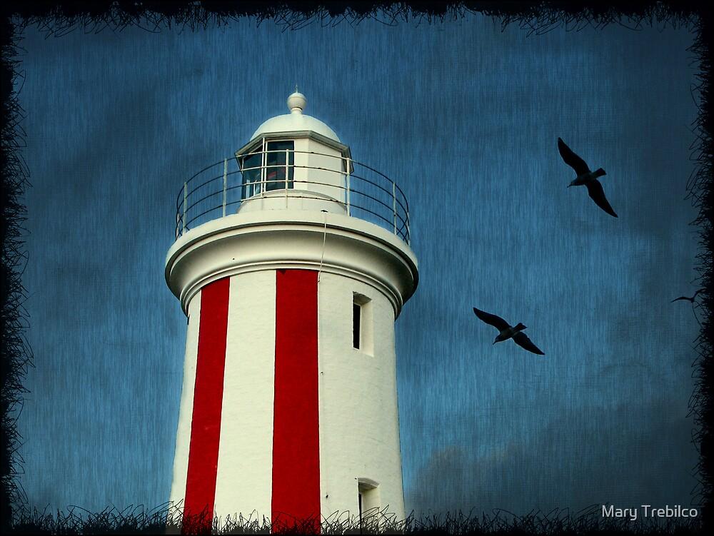 Heading for the lighthouse... by Mary Trebilco