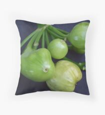 RIPE Throw Pillow