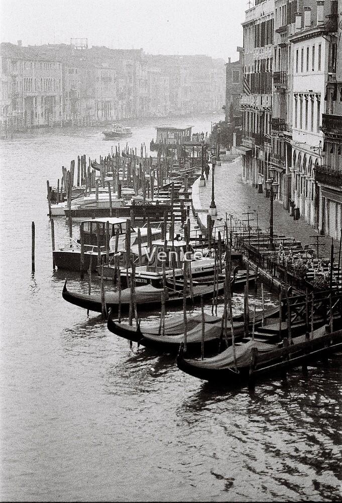 Mornings Mist by Venice