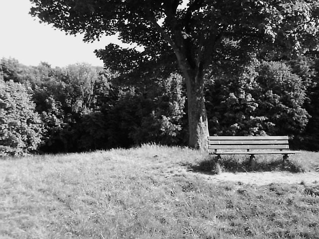 the bench ! =) by kate93