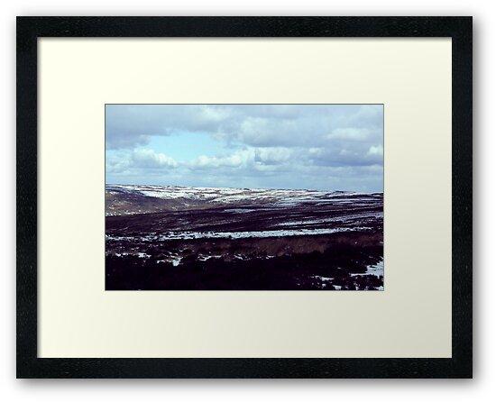 North York Moors by Trevor Kersley