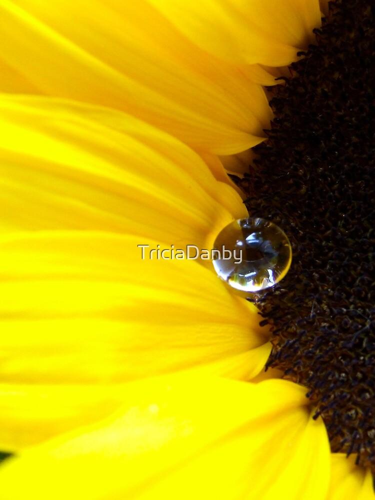 Sunflower tear by TriciaDanby