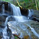 Somersby Falls Close Up by Bev Woodman