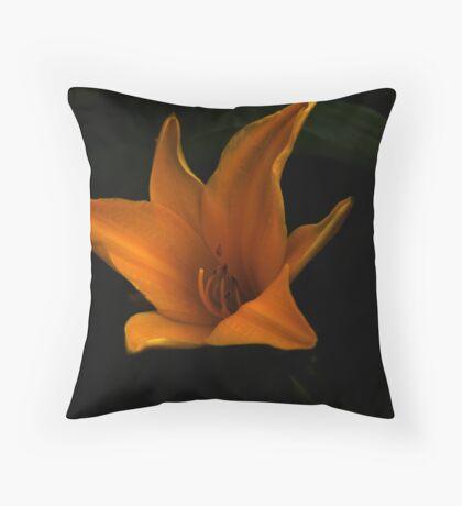 Its a flower lol Throw Pillow