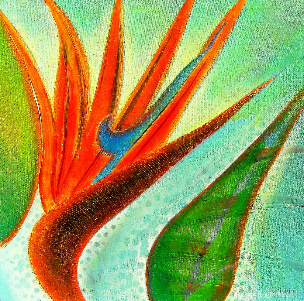 """ Bird of Paradise "" by Exhibition"