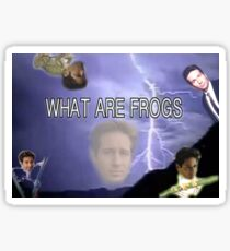 What Are Frogs Sticker