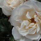 White 'n Green by Riihele