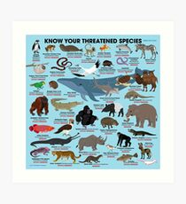 Know Your Threatened Species Art Print