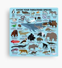 Know Your Threatened Species Canvas Print