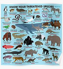 Know Your Threatened Species Poster