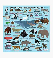 Know Your Threatened Species Photographic Print