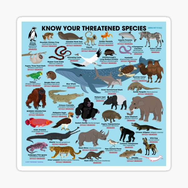 Know Your Threatened Species Sticker