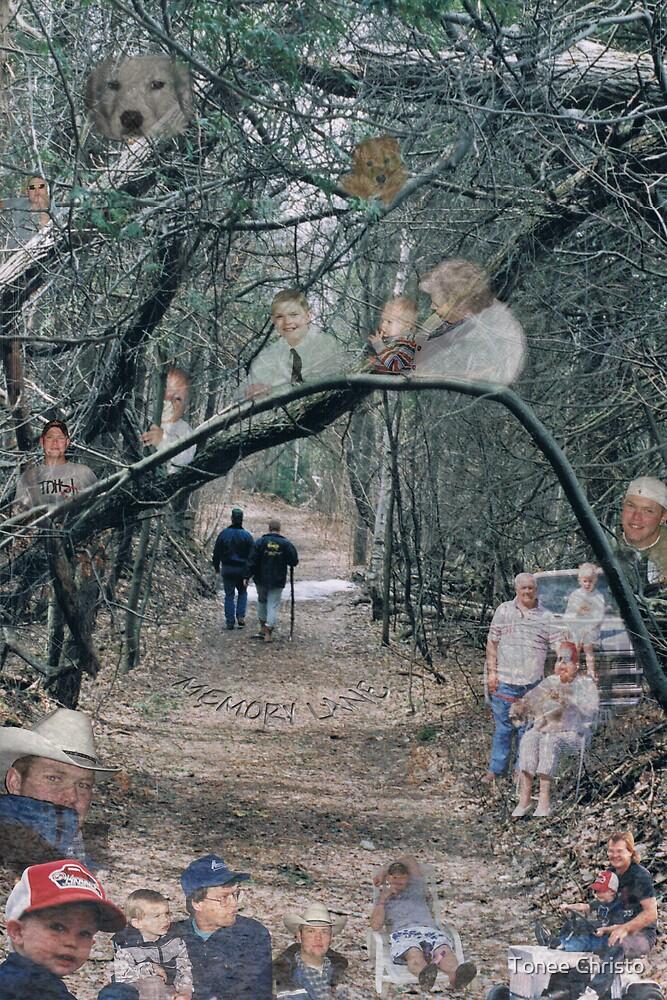 Memory Lane by Tonee Christo