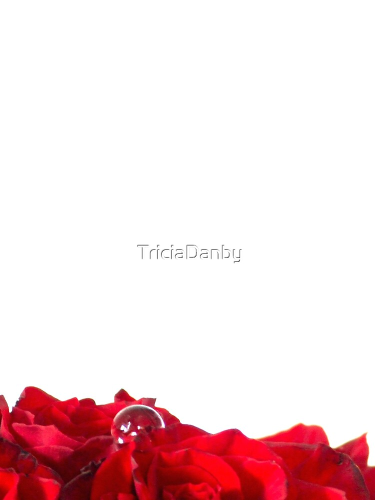 Upon a bed of roses by TriciaDanby