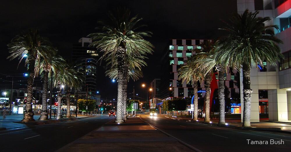 Docklands....Melbourne by Tamara Bush