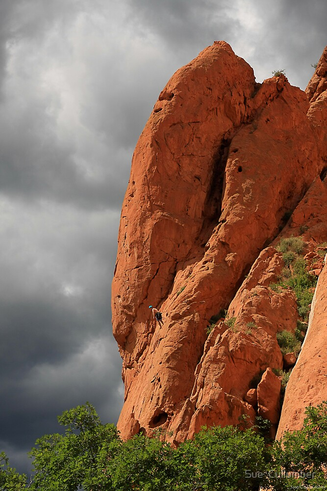 Red Rock Climber by Sue  Cullumber
