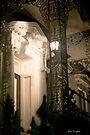 Charleston Doors by Mary Campbell