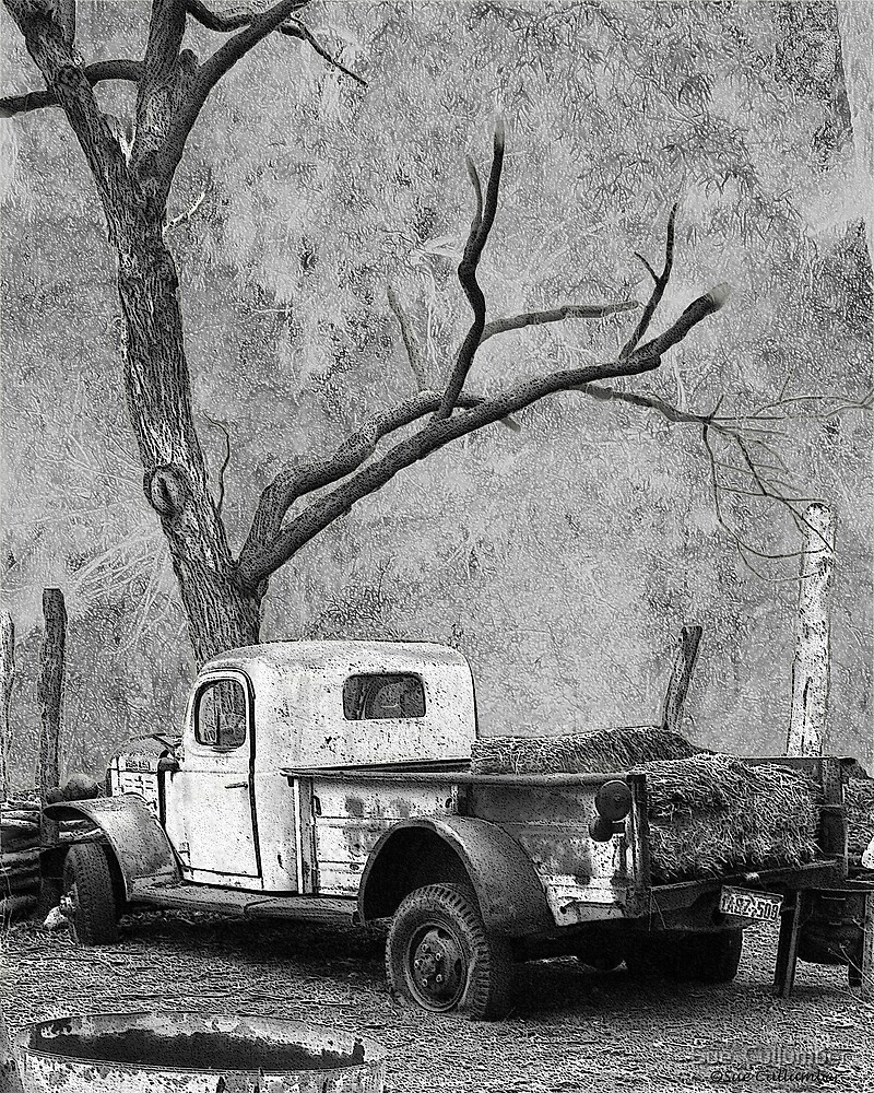The Old Dodge by Sue  Cullumber