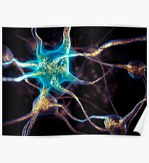 Brain cells network of neurons 3D illustration art photo print Poster