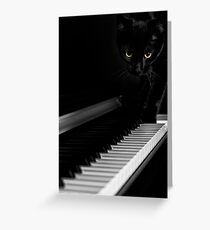 Black cat on piano keyboard art photo print Greeting Card