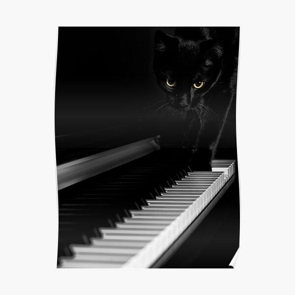 Black cat on piano keyboard art photo print Poster