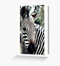 Zebra,136 viewings, 1person favorite, 6 comments Greeting Card