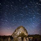 Arthur's Stone, Gower, Swansea by Purple128