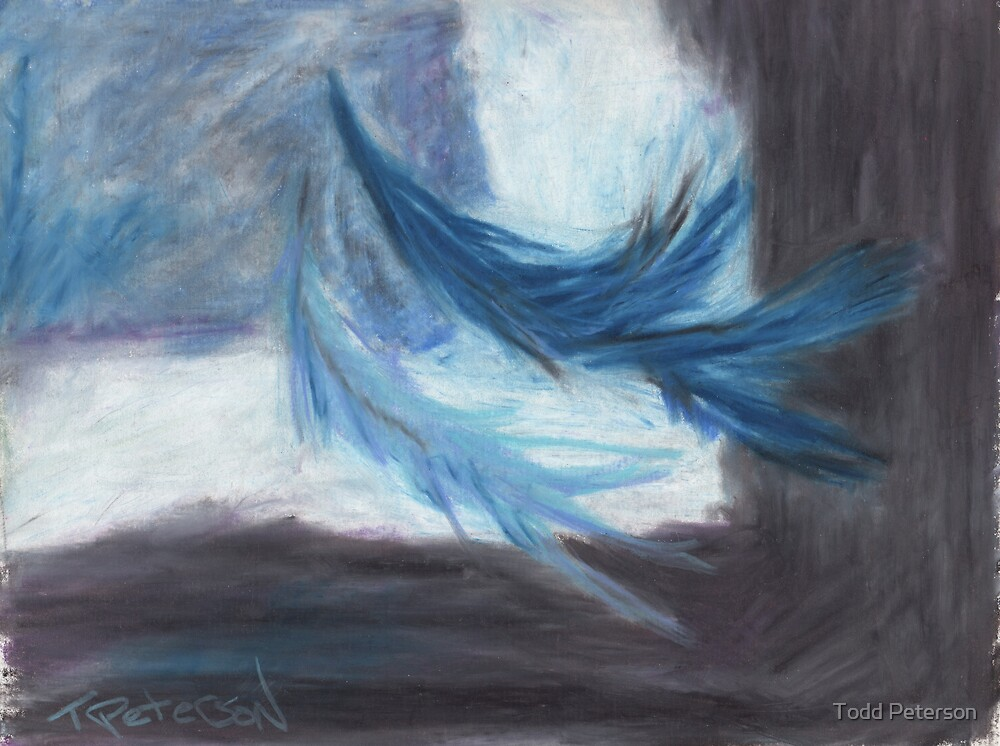 I dreamt of flight by Todd Peterson