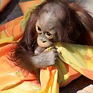 Baby and Blankie by Sue  Cullumber