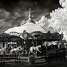 The Carousel by Sue  Cullumber
