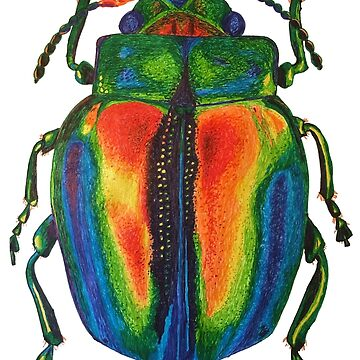 Rainbow Beetle Ink Drawing - Dead Nettle Leaf Beetle by IridescentEye