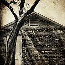 Treeoverdoor by Hollie Cook