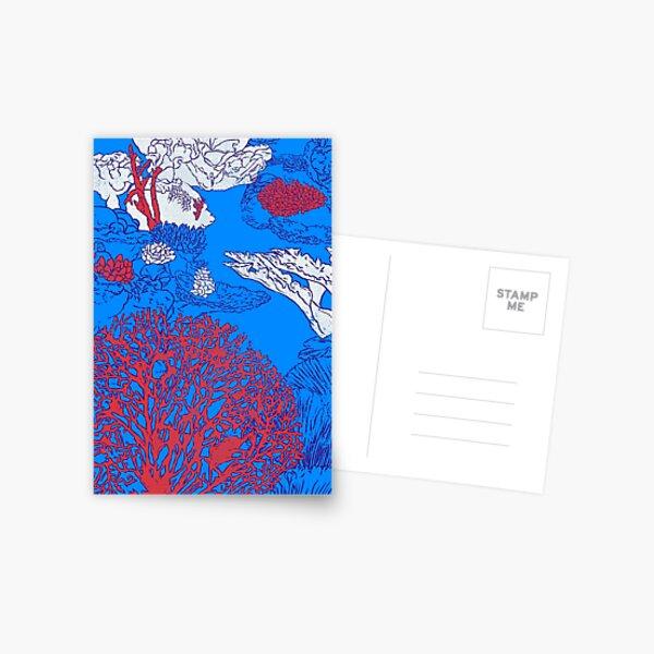 Coral reef Postcard