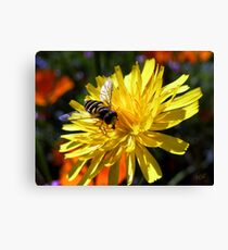 Flower with Wasp Canvas Print