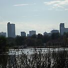 Denver Skyline, Denver, Colorado by lenspiro